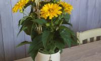 vase-céramique-création-unique.jpg